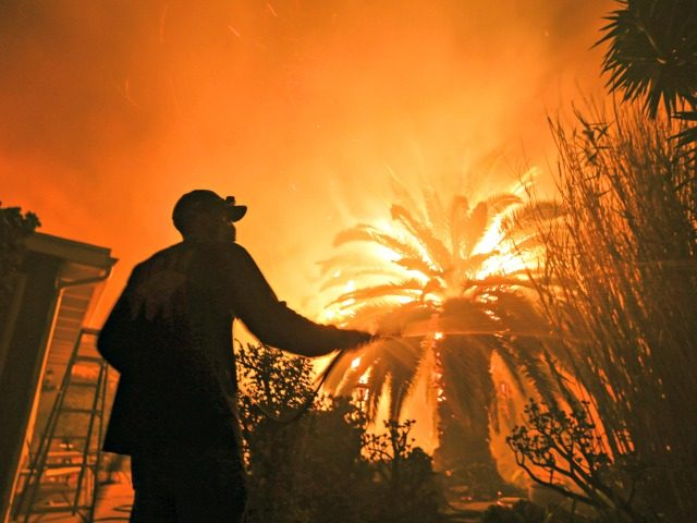 Park Billow, 27, sprays water on the hot spots in his backyard as the Woolsey Fire burns in Malibu, Calif., Friday, Nov. 9, 2018. Authorities announced Friday that a quarter of a million people are under evacuation orders as wind-whipped flames rage through scenic areas west of Los Angeles and …