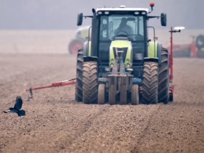 A crow flies in front of a farmer sowing a field with a tractor and a seeder near Illiers-Combray, on October 19, 2018. (Photo by JEAN-FRANCOIS MONIER / AFP) (Photo credit should read JEAN-FRANCOIS MONIER/AFP/Getty Images)