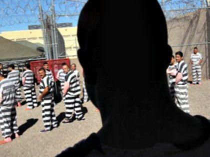 Illegal Immigrants in Prison