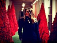 Melania Among Red Christmas Trees
