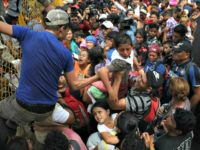 Gallup: Five Million Central Americans Want to Join Caravans to the U.S.