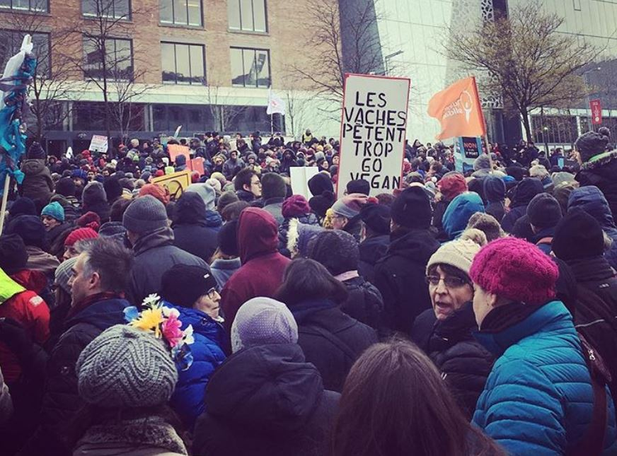 Montreal march against climate change
