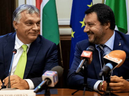 Salvini to Hold Conference to Unite Up to 20 Different European Populist Parties