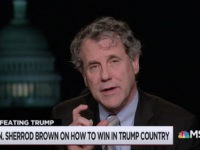 Sherrod Brown: I'm Considering 2020 Run to Stop Trump's 'Hate Speech' Giving 'License' to Racist Violence