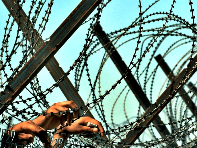 Barbed Wire Is Seen Going Up at US-Mexico Border