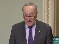 Schumer Vows to Put a Vote on the Floor Urging Intervention in ObamaCare Case 'First Thing'