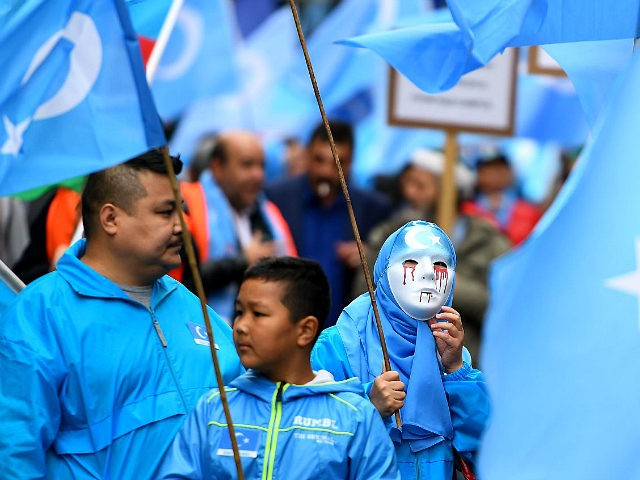 Ethnic Uighurs take part in a protest march asking for the European Union to call upon China to respect human rights in the Chinese Xinjiang region and asking for the closure of 're-education center' where some Uighurs are detained, during a demonstration around the EU institutions in Brussels on April …