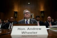 President Donald Trump has said he plans to nominate acting EPA Administrator Andrew Wheeler, a former coal and energy industry lobbyist, to head the agency