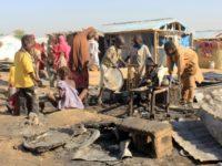 Boko Haram kidnaps 50 loggers in Nigeria: civilian militia