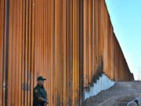 DHS Spox: 30-Foot Bollard Fence in Calexico is Trump's Border Wall