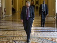 Schumer Vows Vote on ObamaCare Case 'First Thing'