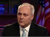 Scalise: 'Every Single Day' at Least 10 Known Terrorists Are Captured Trying to Cross Our Border