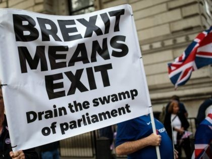 LONDON, ENGLAND - SEPTEMBER 05: Protesters demonstrate against Prime Minister Theresa May's Chequers plan for Brexit outside the gates of Downing Street on September 5, 2018 in London, England. The former Governor of the Bank of England Lord King has criticised the Government's handling of Brexit negotiations, labelling the preparations …