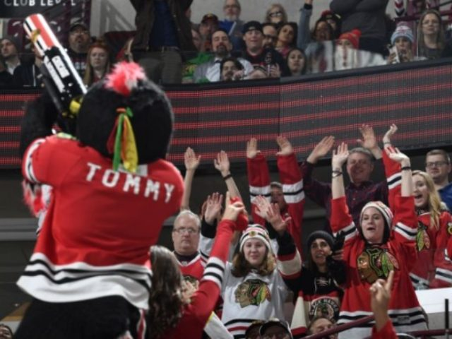Blackhawks mascot gets into fight after game
