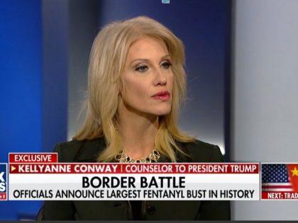 """Kellyanne Conway on """"Fox News @ Night,"""" 1/31/2019"""