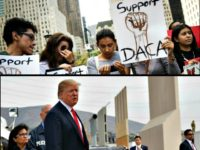 DACA Amnesty for the Wall