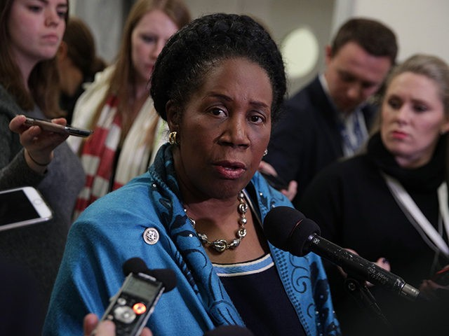 WASHINGTON, DC - DECEMBER 07: U.S. Rep. Sheila Jackson-Lee (D-TX) speaks to members of the media at a hallway of the Rayburn House Office Building where former Federal Bureau of Investigation Director James Comey testifies to the House Judiciary and Oversight and Government Reform committees on Capitol Hill December 07, …