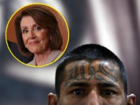 (INSET: Nancy Pelosi) A member of the Mara Salvatrucha (MS13), is pictured on Monday, March 4, 2013, in the Criminal Center of Ciudad Barrios, San Miguel, 160 km east of San Salvador, one year after the cessation of the violence between the rivalry of two large gangs in El Salvador, …