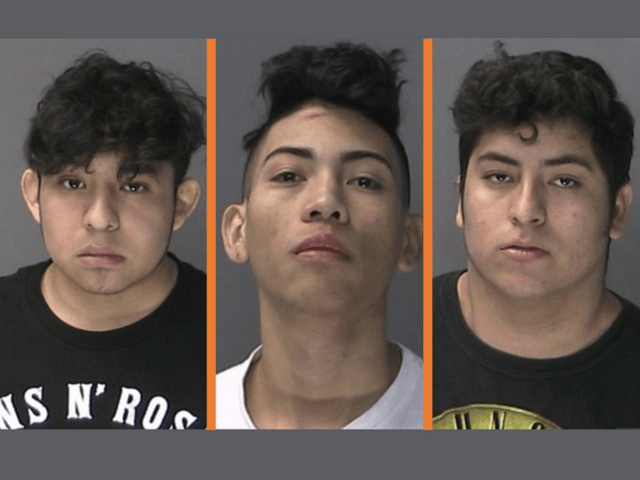 MS-13 Gang Suspects in Long Island Stabbing