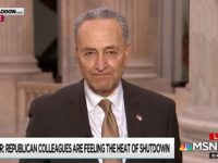 Schumer: 'We Have to Stay Strong' on Shutdown, Republicans Will Pressure Trump
