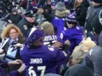 Ravens Fans Fight