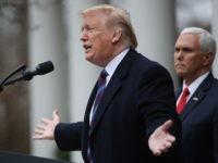 Trump in Rose Garden (Mark WIlson / Getty)