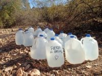 Water Jugs in Desert (Photo: Facebook/No More Deaths)