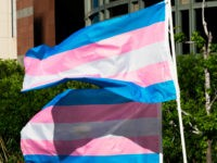 Trans pride flags flutter in the wind at a gathering to celebrate International Transgender Day of Visibility, March 31, 2017 at the Edward R. Roybal Federal Building in Los Angeles, California. International Transgender Day of Visibility is dedicated to celebrating transgender people and raising awareness of discrimination faced by transgender …