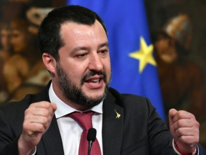 Italy's Interior Minister and deputy PM Matteo Salvini gestures as he speaks during a press conference in Rome January 17, 2019