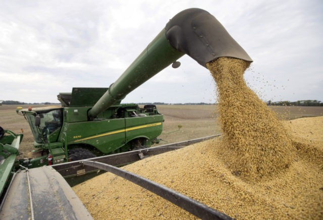 CBOT wheat ends near unchanged as traders eye U.S.-China trade