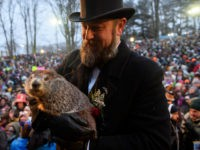 Handler AJ Dereume holds Punxsutawney Phil after he did not see his shadow predicting an early spring during the 133rd annual Groundhog Day festivities on February 2, 2019 in Punxsutawney, Pennsylvania. Groundhog Day is a popular tradition in the United States and Canada. A crowd of upwards of 30,000 people …