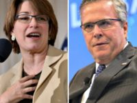 Amy Klobuchar, Jeb Bush