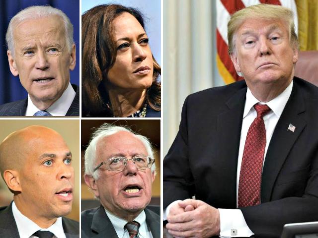 Biden, Harris, Trump, Sanders, Booker