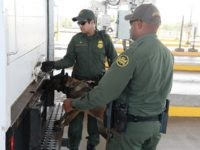 Border Patrol K-9 Checks Tractor-Trailer for suspected human smuggling activity. (Photo: U.S. Border Patrol)