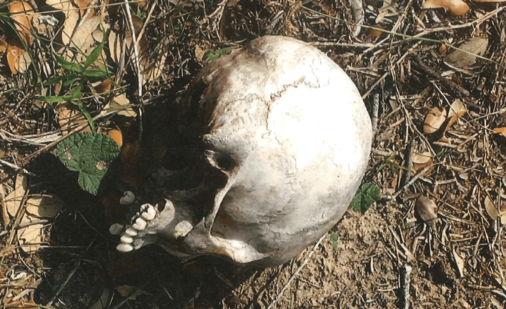 Brooks County Sheriff's Office Deputies recover the skeletal remains of a deceased migrant about 80 miles from the Mexican border with Texas. (Photo: Brooks County Sheriff's Office)