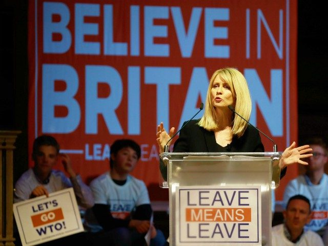Conservative Party MP Esther McVey speaks at a political rally entitled 'Lets Go WTO' hosted by pro-Brexit lobby group Leave Means Leave in London on January 17, 2019. - British Prime Minister Theresa May scrambled to put together a new Brexit strategy on Thursday after MPs rejected her EU divorce …