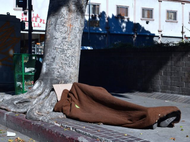 Los Angeles homeless (Frederic J. Brown / AFP / Getty)