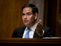 Sen. Marco Rubio (R-FL). (Drew Angerer/Getty Images)