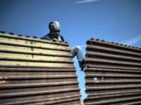 A migrant tries to bring down part of the border fence near El Chaparral border crossing in Tijuana on Nov 25. / AFP / Getty Images