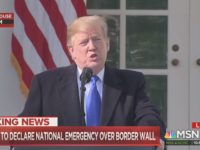 Trump: We'll 'Possibly Get a Bad Ruling' on Emergency Declaration, 'Hopefully' We'll Win at SCOTUS