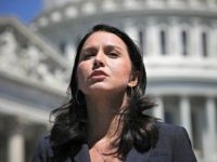 Tulsi Gabbard Tells Dems to 'Move Beyond' Mueller Report: 'Could Have Even Led to Civil War'