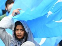 A woman takes part in a protest march of Ethnic Uighurs asking for the European Union to call upon China to respect human rights in the Chinese Xinjiang region and asking for the closure of 're-education center' where some Uighurs are detained, during a demonstration around the EU institutions in …