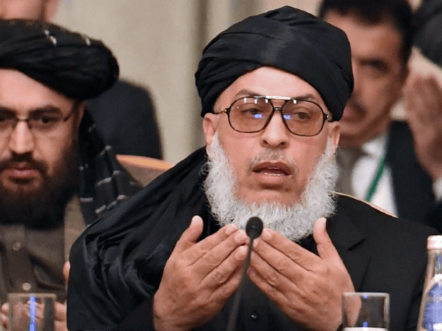 Taliban spokesman Mohammad Abbas Stanikzai said the insurgents did not want a monopoly on power.