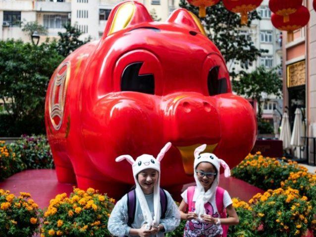 Chinese communities around world welcome Year of the Pig