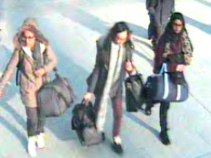 UK teen runaway who joined IS 'wants to come home'
