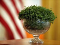 The bowl of shamrocks that will be presented to President Donald Trump Thursday, March 14, 2019, during the annual presentation in the East Room of the White House in Washington. (AP Photo/Jacquelyn Martin)