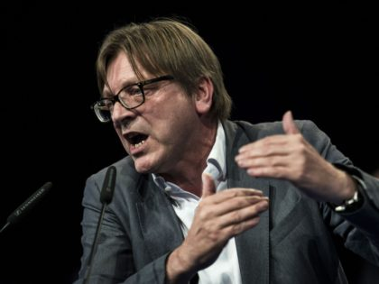 Top candidate of Liberals (ALDE) Guy Verhofstadt delivers a speech on April 30, 2014 during an UDI / MODEM campaign meeting in Lyon for the European election. AFP PHOTO / JEFF PACHOUD (Photo credit should read JEFF PACHOUD/AFP/Getty Images)