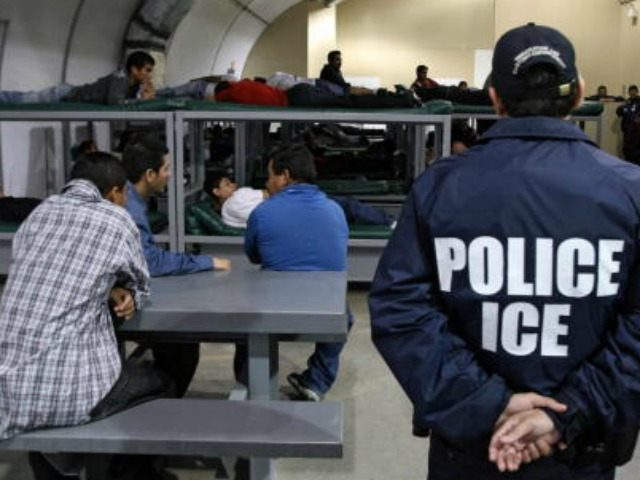 ICE Detained Illegal Aliens