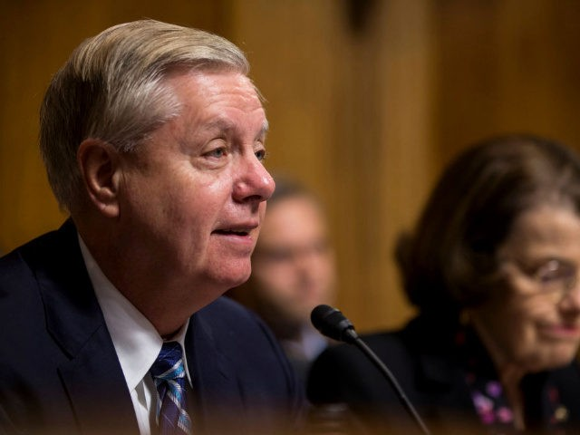 Senate Judiciary Committee Chairman Sen. Lindsey Graham (R-SC) speaks during a Senate Judiciary confirmation hearing for Neomi Rao, U.S. President Donald Trump's nominee to be a U.S. Circuit Court of Appeals judge for the District of Columbia Circuit, on Capitol Hill on February 5, 2019 in Washington, DC.