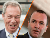 German Politician Fears Farage Leading 'Anti-Elite Parties' in EU Elections